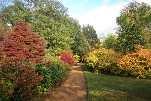 есенна градина