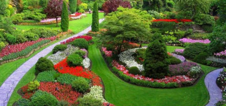 красиви градини