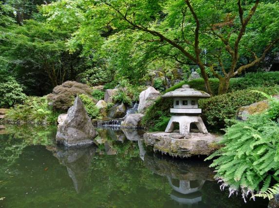 Красива градина 5