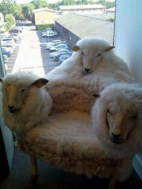 овча галава