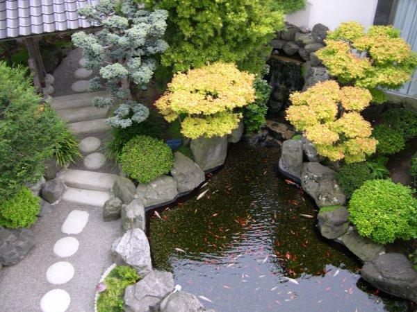 Kрасива японска  градина